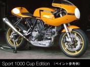 Ducati sport 1000s 52
