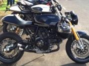 Ducati Sport 1000 81